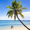 Líbánky na Fidži v Tokoriki Island
