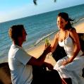 Líbánky na Mauriciu v Pearl Beach