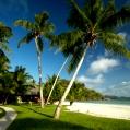 Líbánky na Seychelách v Paradise Sun