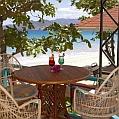 Líbánky v Grenadě v Flamboyant