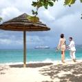 Líbánky v Grenadě ve Spice Island